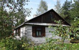 immobiliaremagazine-scegliere-una-casa-per-giardino-in-legno